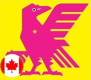 なでしこJAPAN五輪カナダ戦20210721.jpg