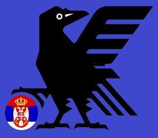 セルビア戦JFAロゴ.jpg
