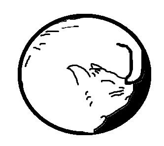 猫丸印.jpg