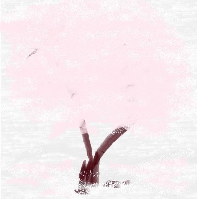 雪の季節に桜が満開.jpg
