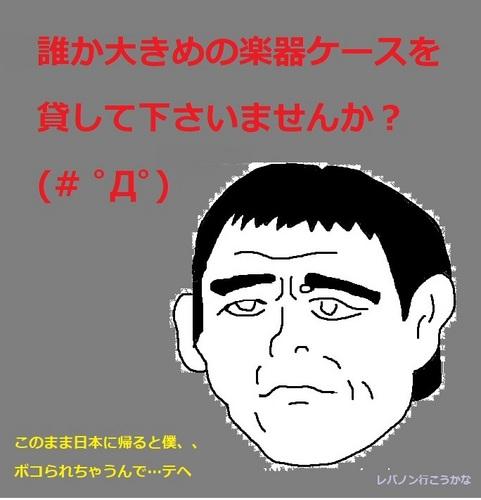 大きめの楽器ケース.jpg